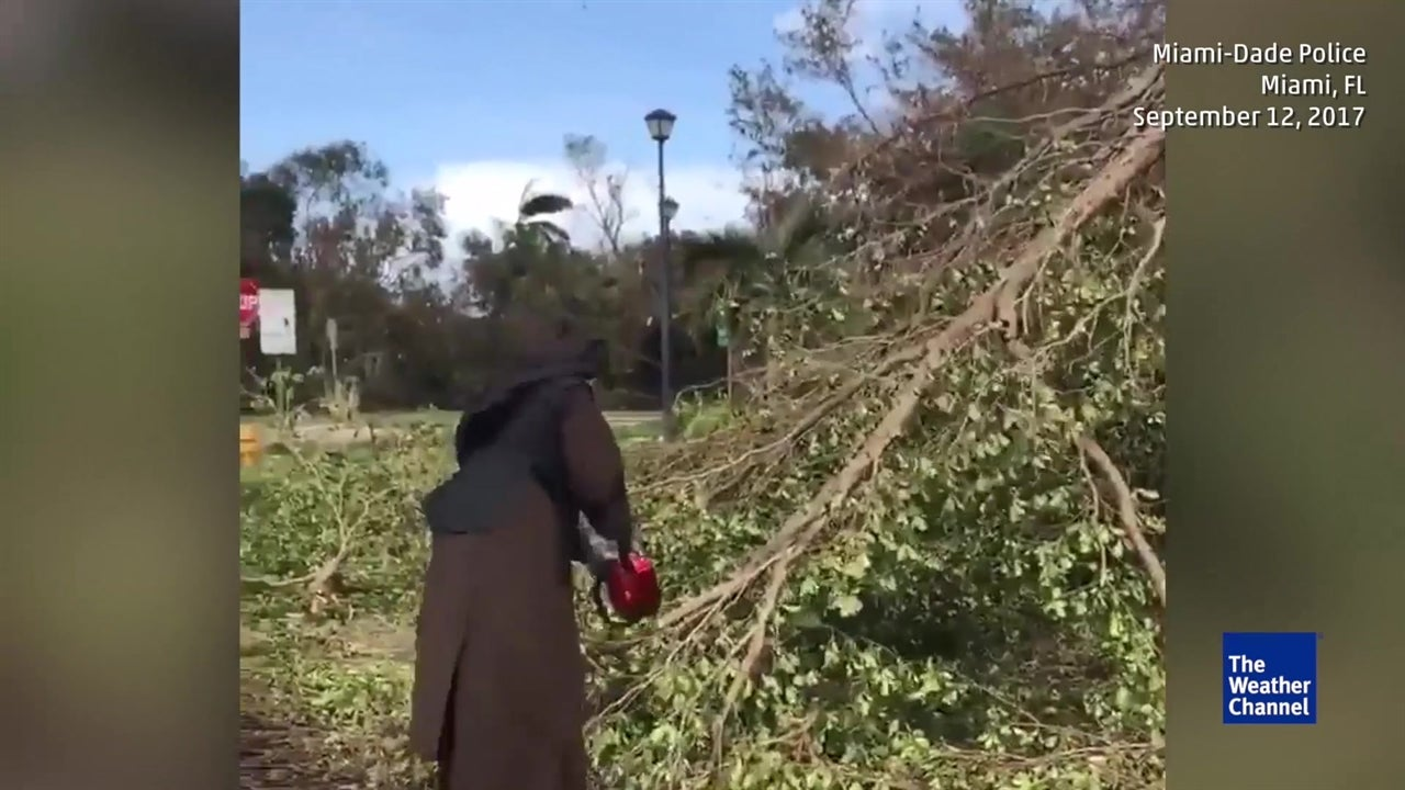 Nun takes on Irma debris with chainsaw