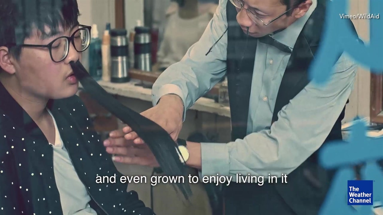 Creepy Chinese ad campaigns against air pollution