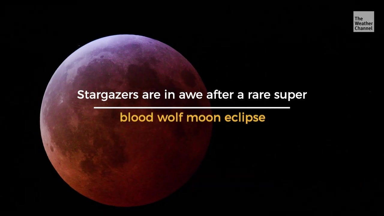 Rare Eclipse Leaves Stargazers Reeling