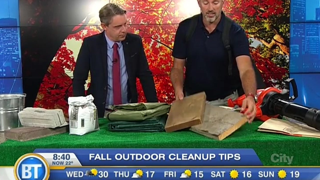 Tips for Fall Outdoor Cleanup