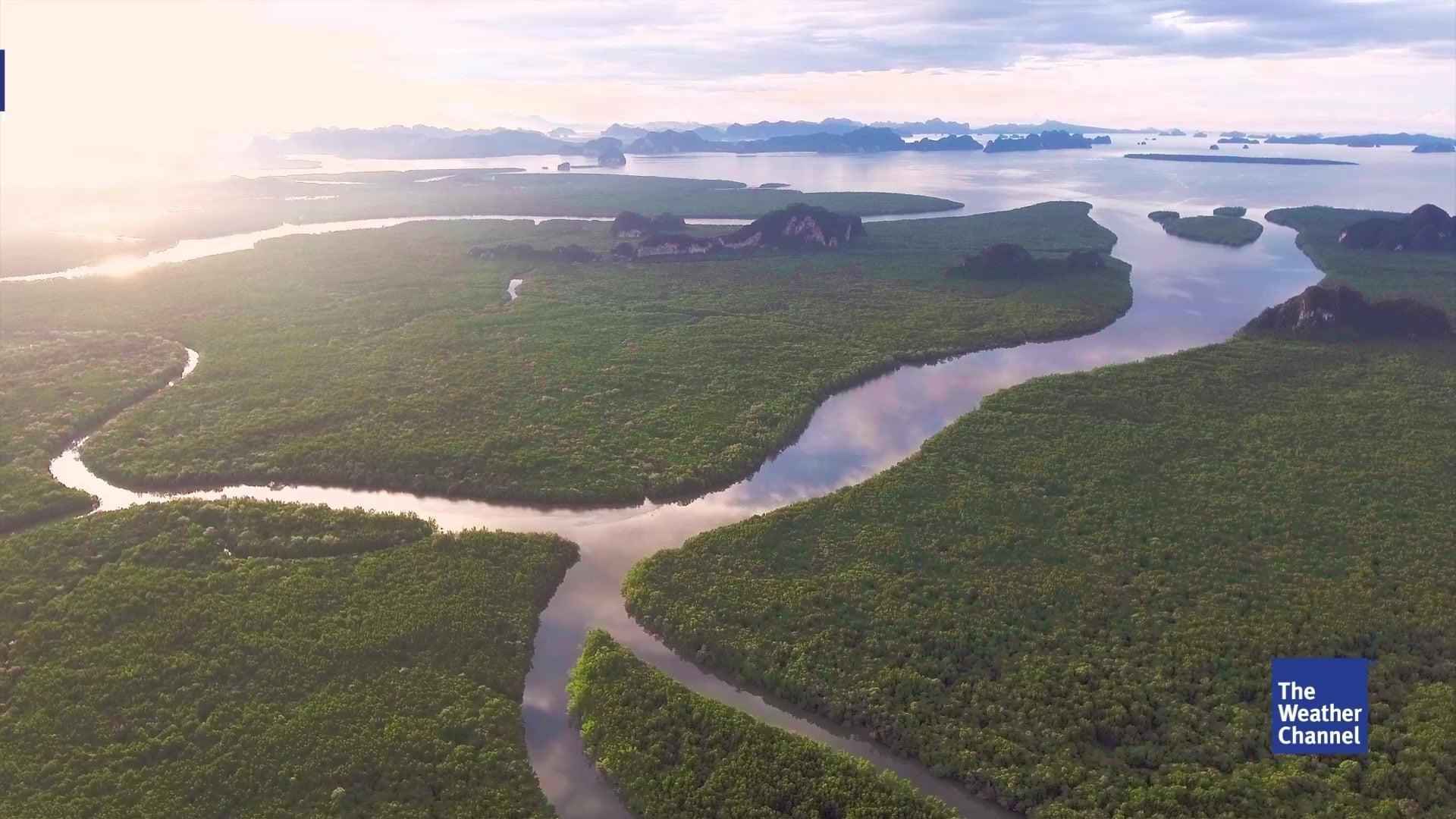 Durch den menschlichen Eingriff von Dämmen und Stauseen gibt es kaum noch einen frei fließenden Fluss auf der Erde. Dies könnte neben der Tierwelt auch zu einem Problem für uns Menschen werden.