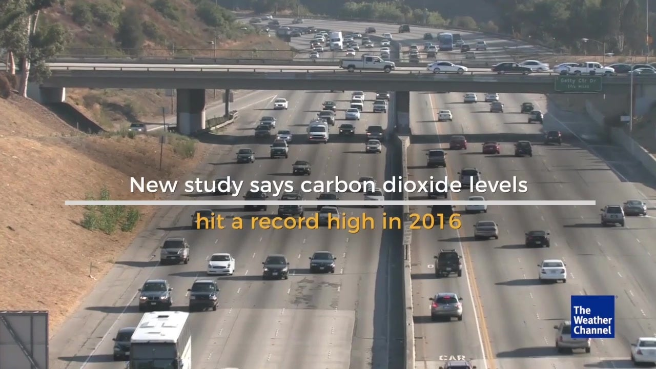 Global CO2 levels hit record high