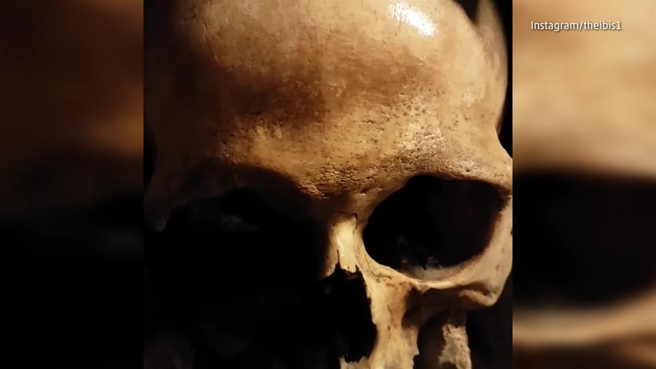 What it's like visiting the Catacombs of Paris
