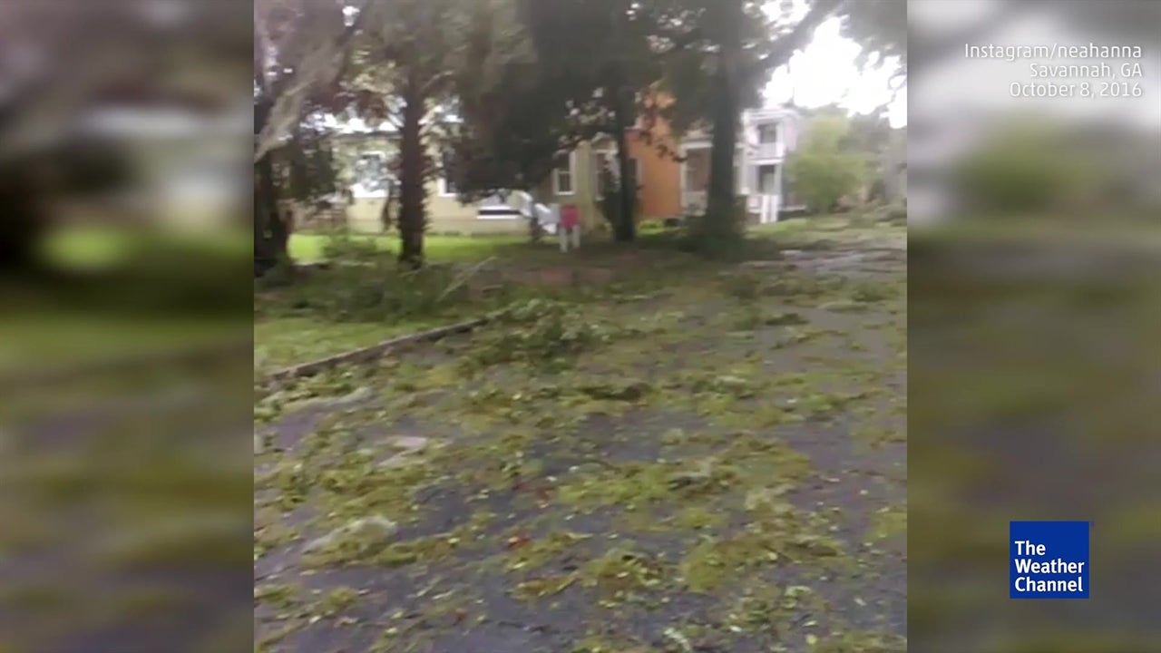 matthew leaves mess in coastal ga