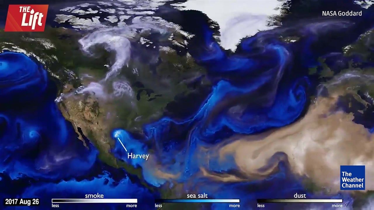 Four major hurricanes in less than 60 seconds