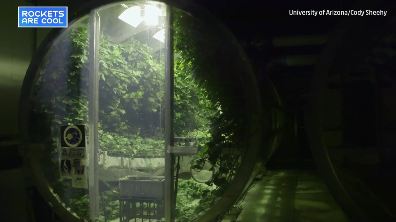 Researchers Design Inflatable Greenhouse