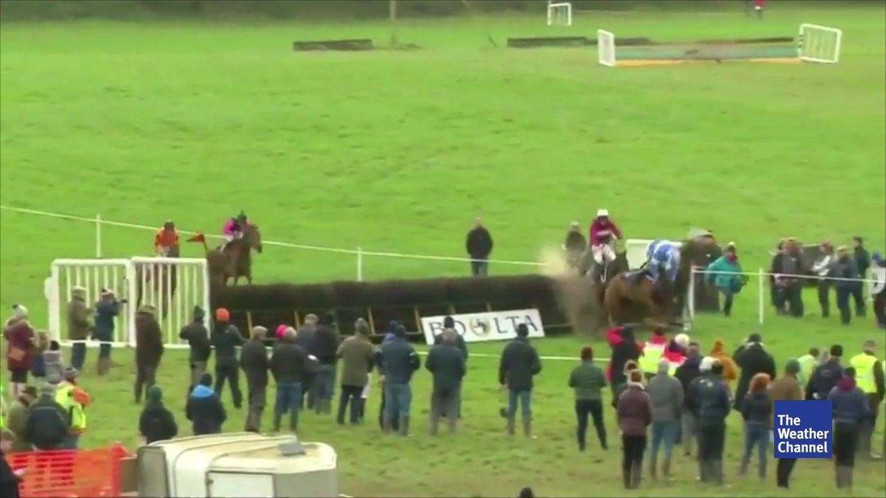 Jockey fällt aus dem Sattel und gewinnt trotzdem