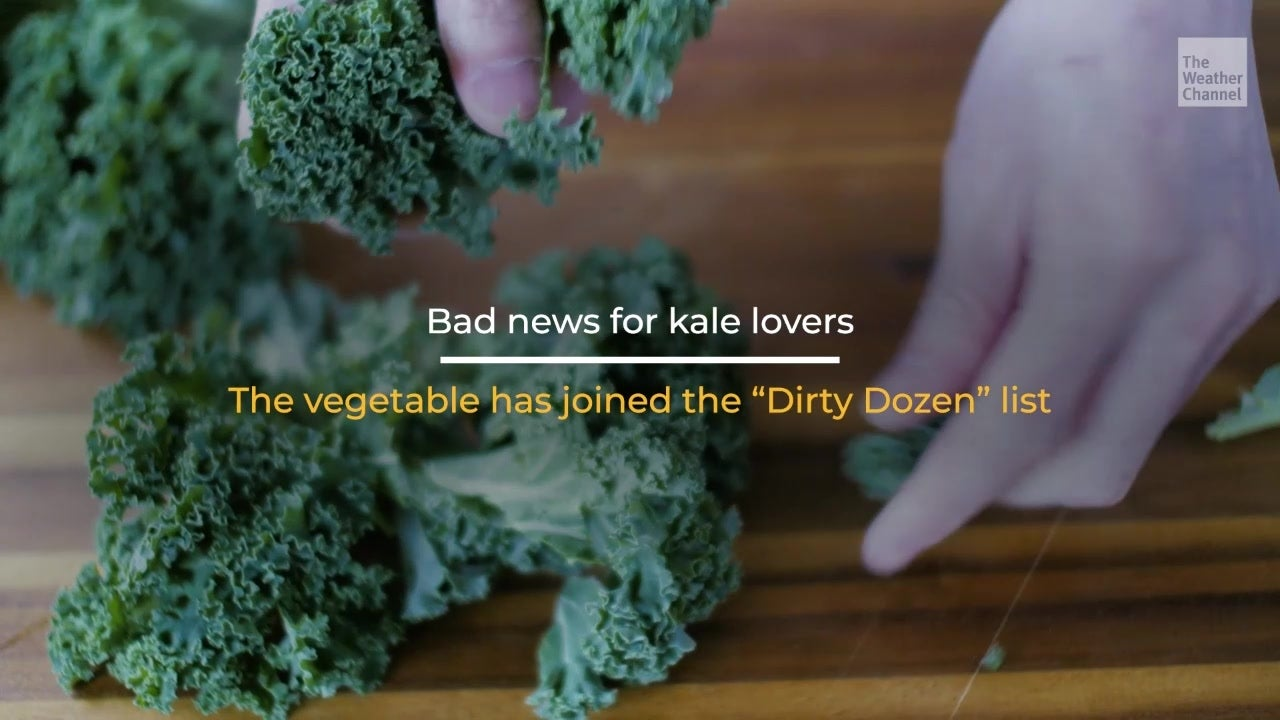 Love Kale? Bad News for You