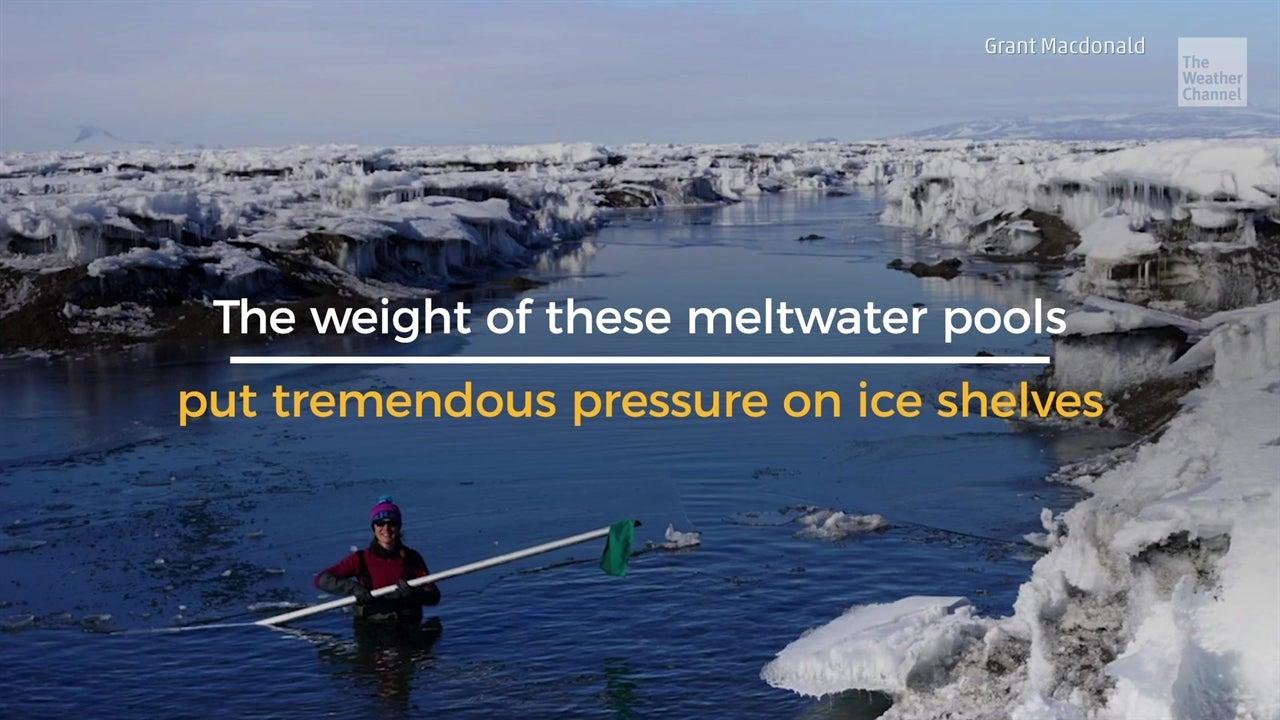 What Led to Ice Shelf's Stunning Demise