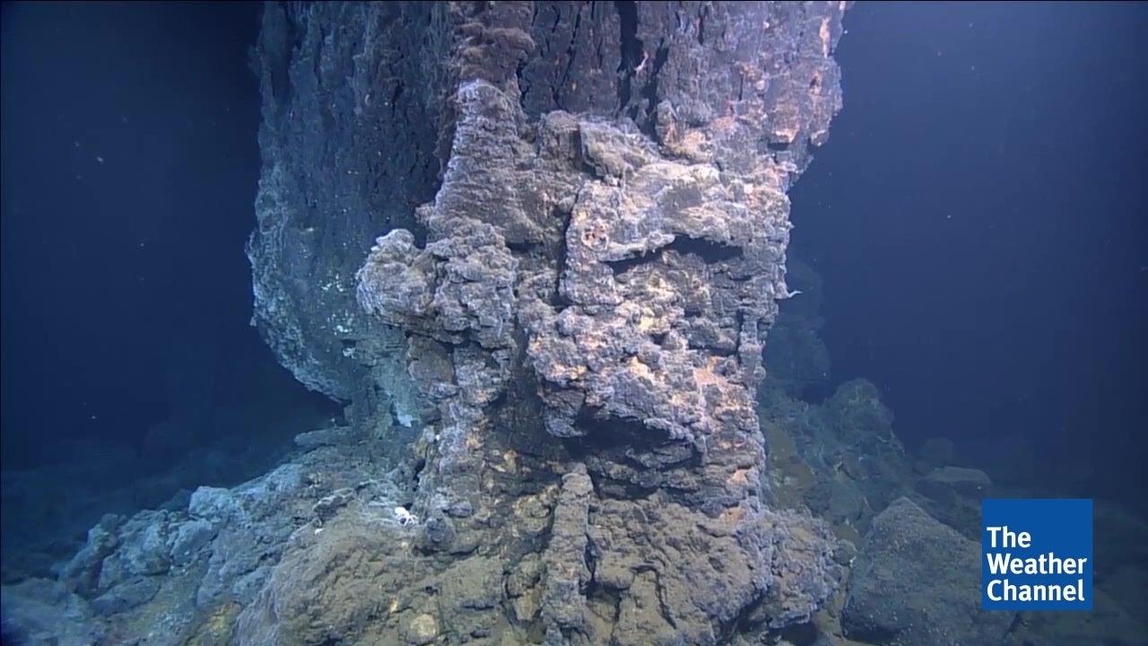 Extrem: So sieht Leben in 4000 Metern Tiefe aus