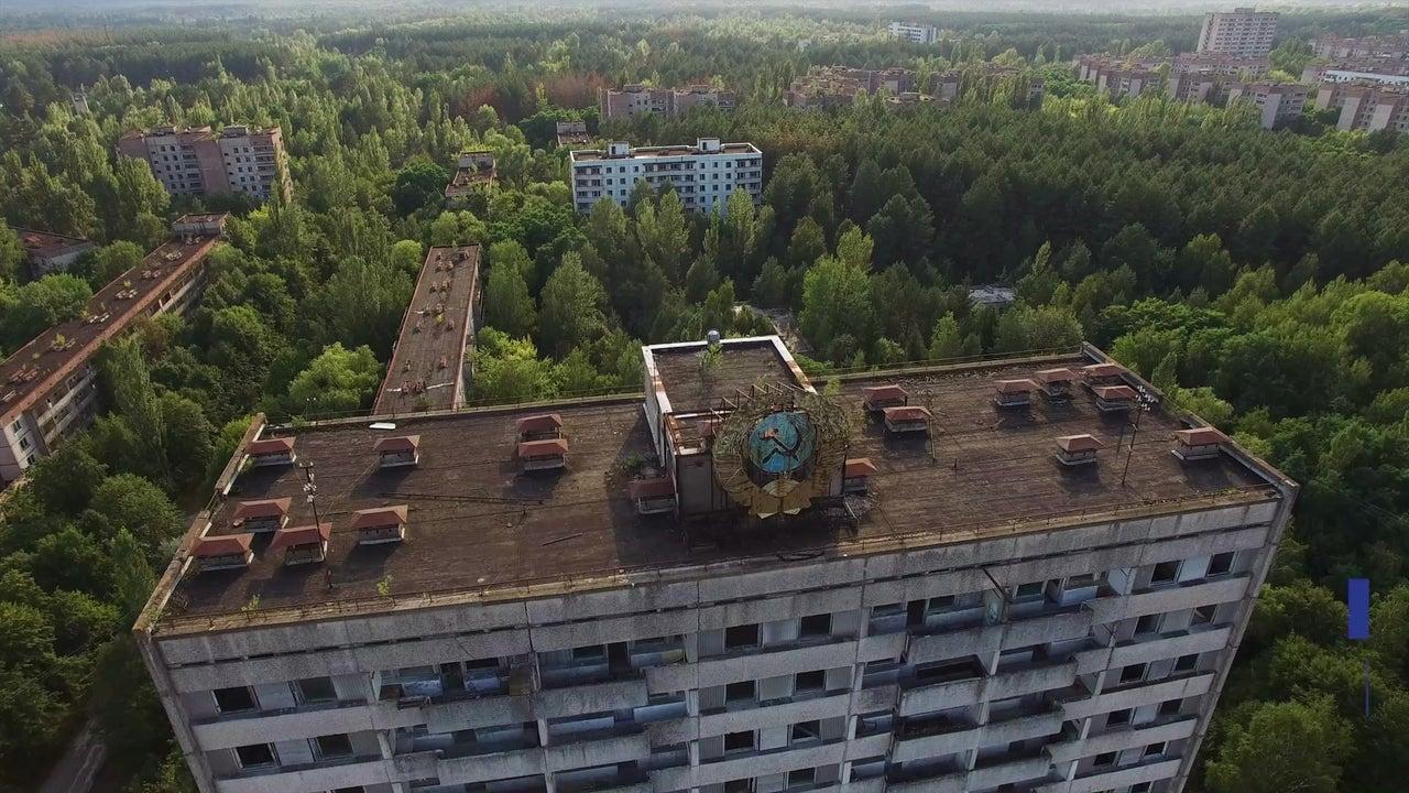 Chernobyl Tiere