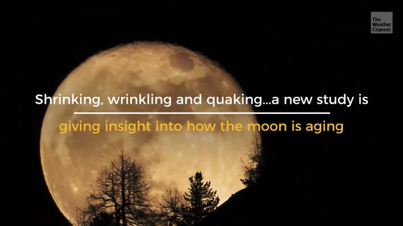 A new look at old seismic data is helping scientists fill in the blanks about how the moon is changing as it gets older.