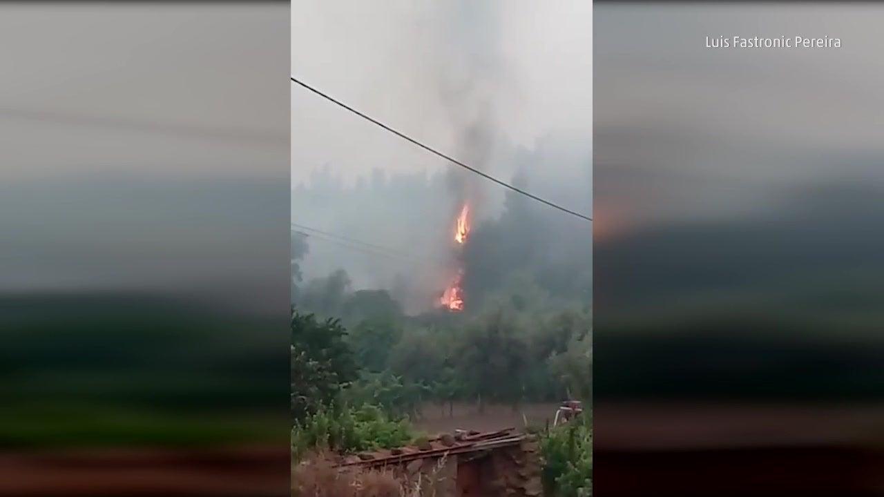 Watch: Portuguese forest fires kill dozens