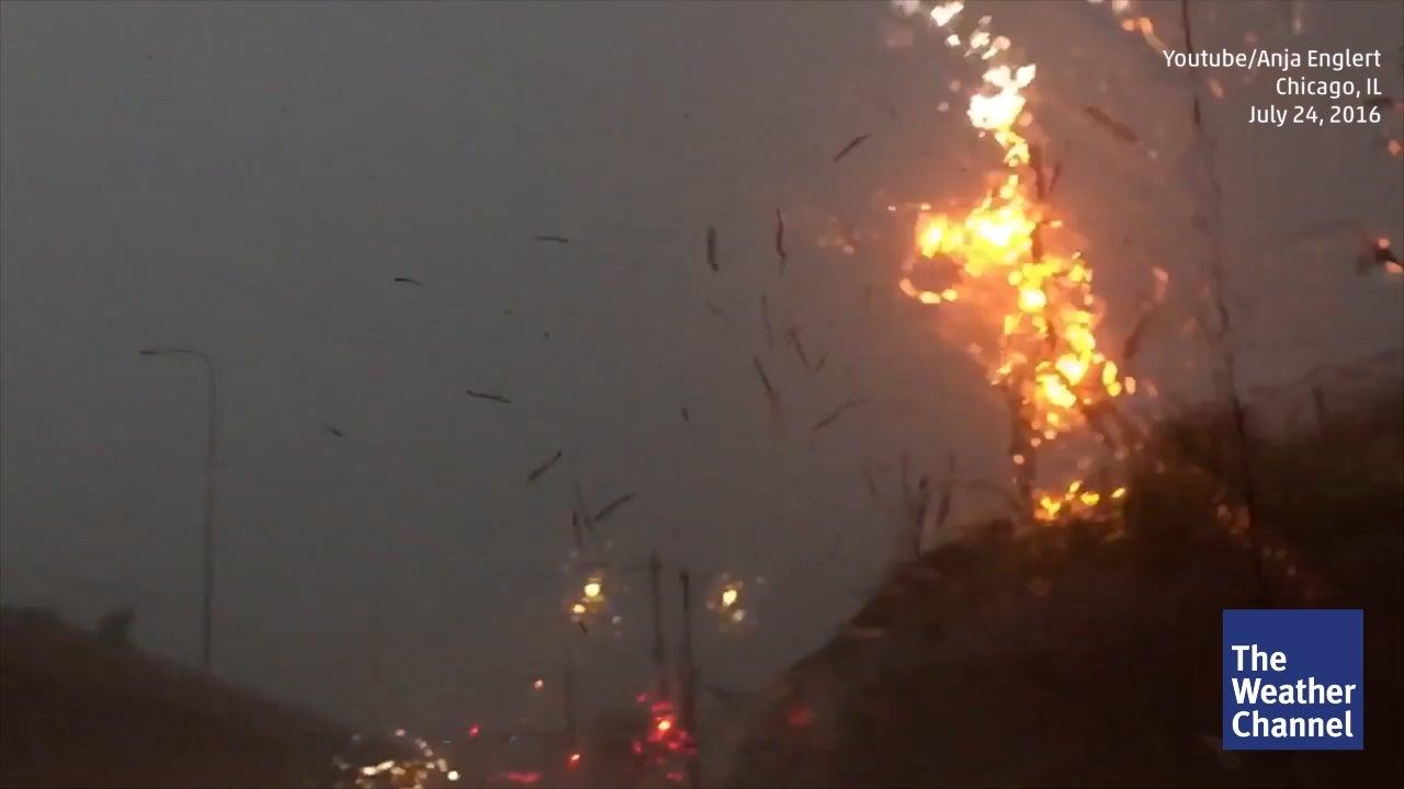 Heftiger Blitzeinschlag zerschmettert Baumstamm