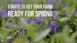 5 Ways To Get Your Farm Ready For Spring