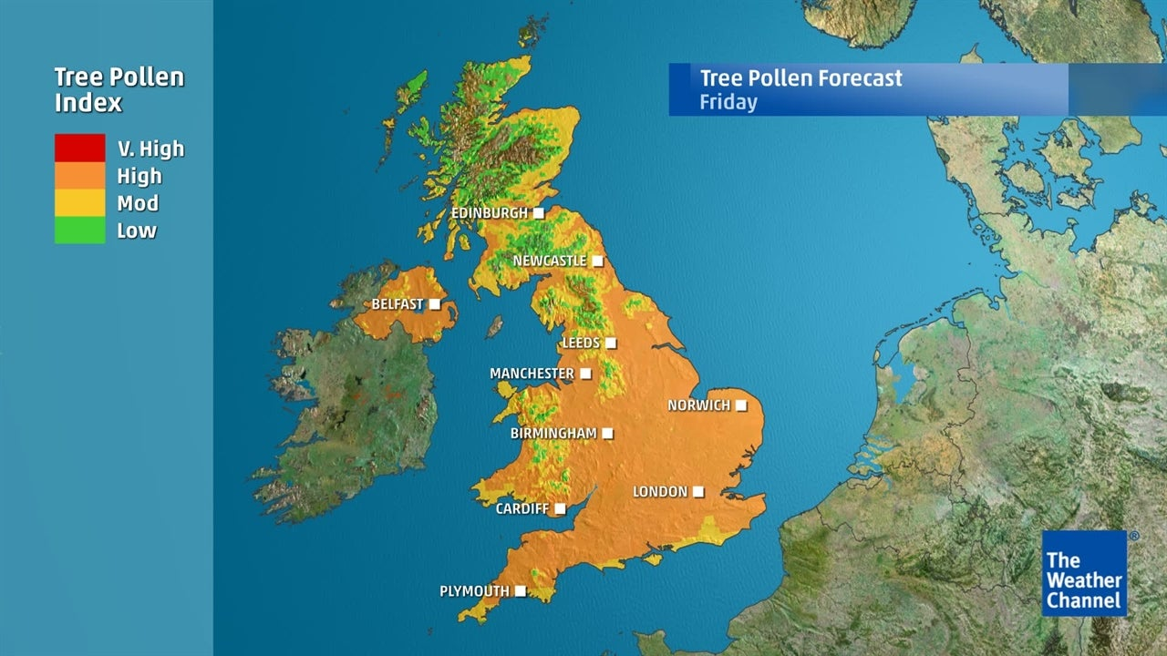 Tree Pollen: Areas most affected across the UK