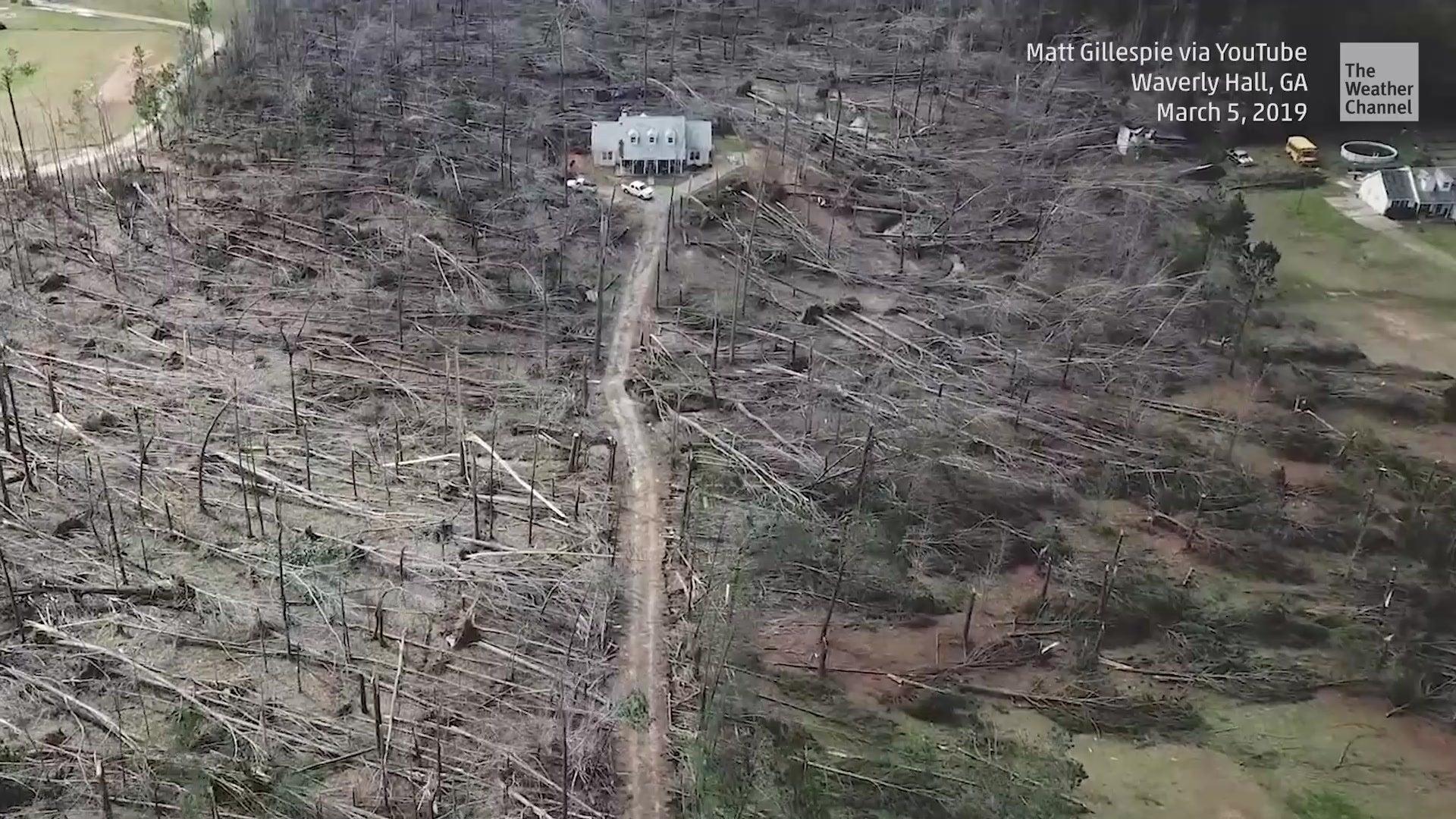 Tornado plättet Bäume - doch ein Haus ist unzerstörbar