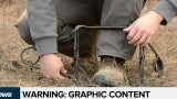 Wildlife Centre wants bylaws against traps