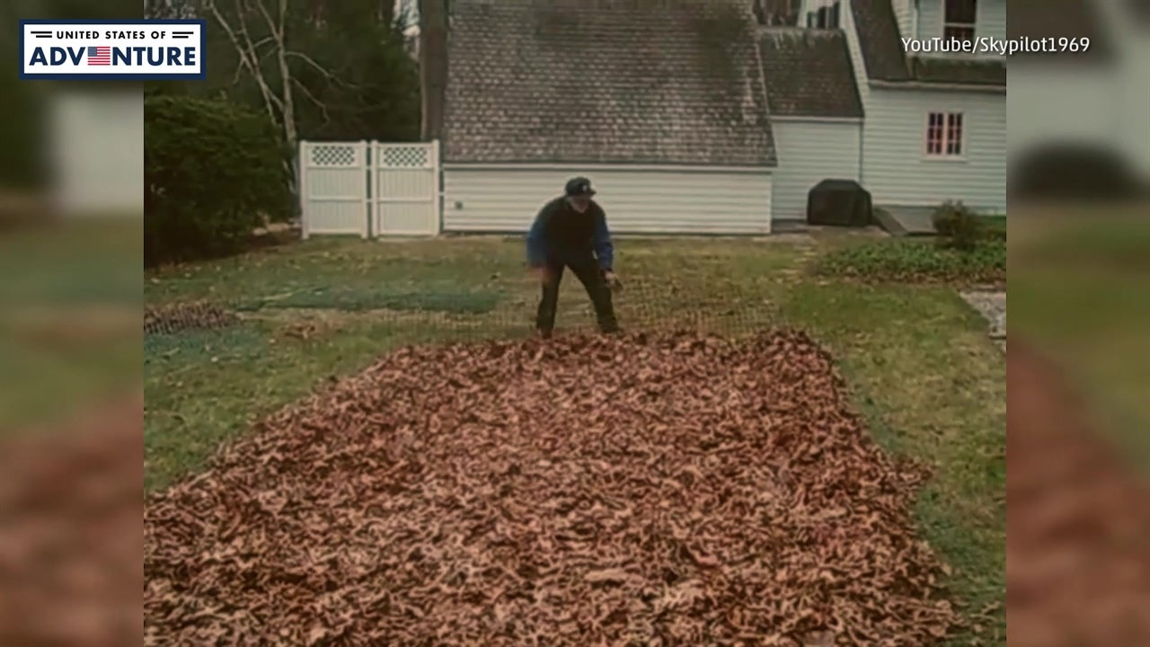 Easiest Way to Remove Leaves