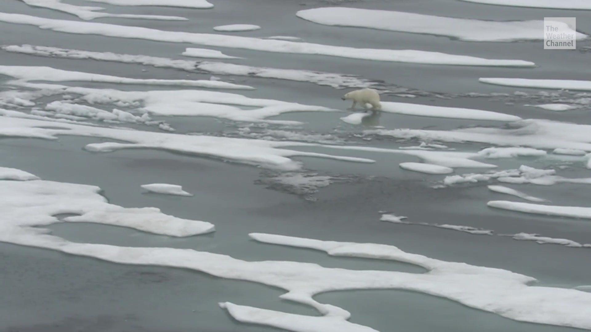 Altes arktisches Meereis ist im Begriff vollständig zu verschwinden