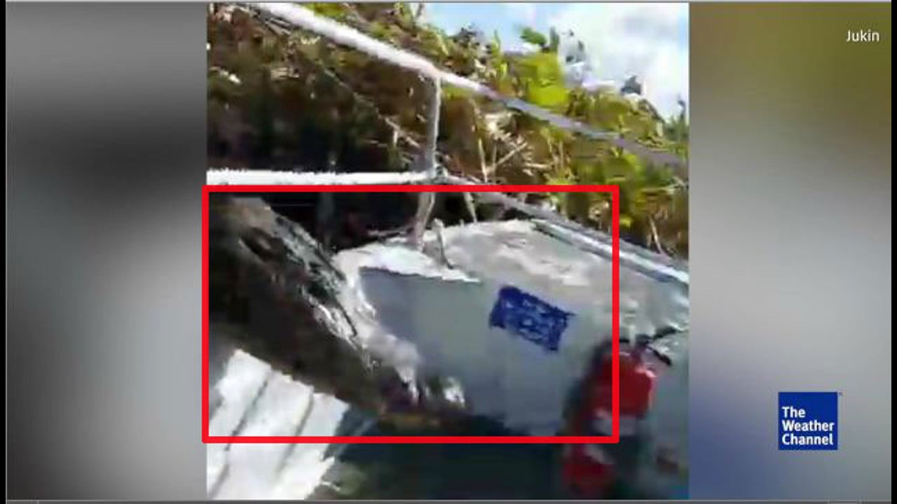 Mann filmt Alligator - der springt plötzlich ins Boot