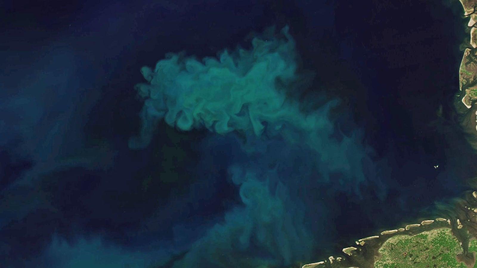 Klimawandel verändert Farbe der Ozeane - mit ernsten Folgen