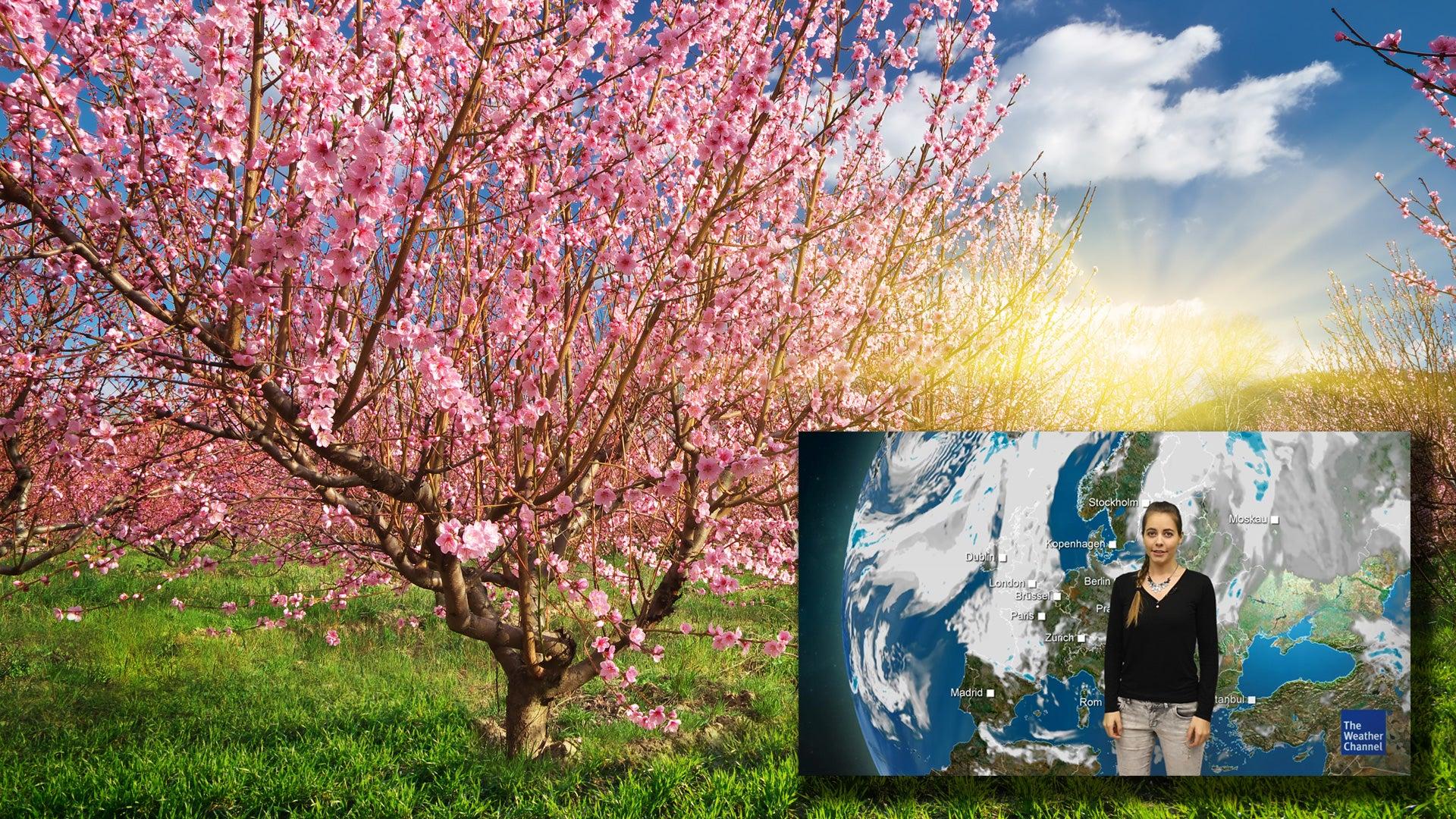 Zum Frühlingsanfang kommt sonniges Wetter - aber nicht überall