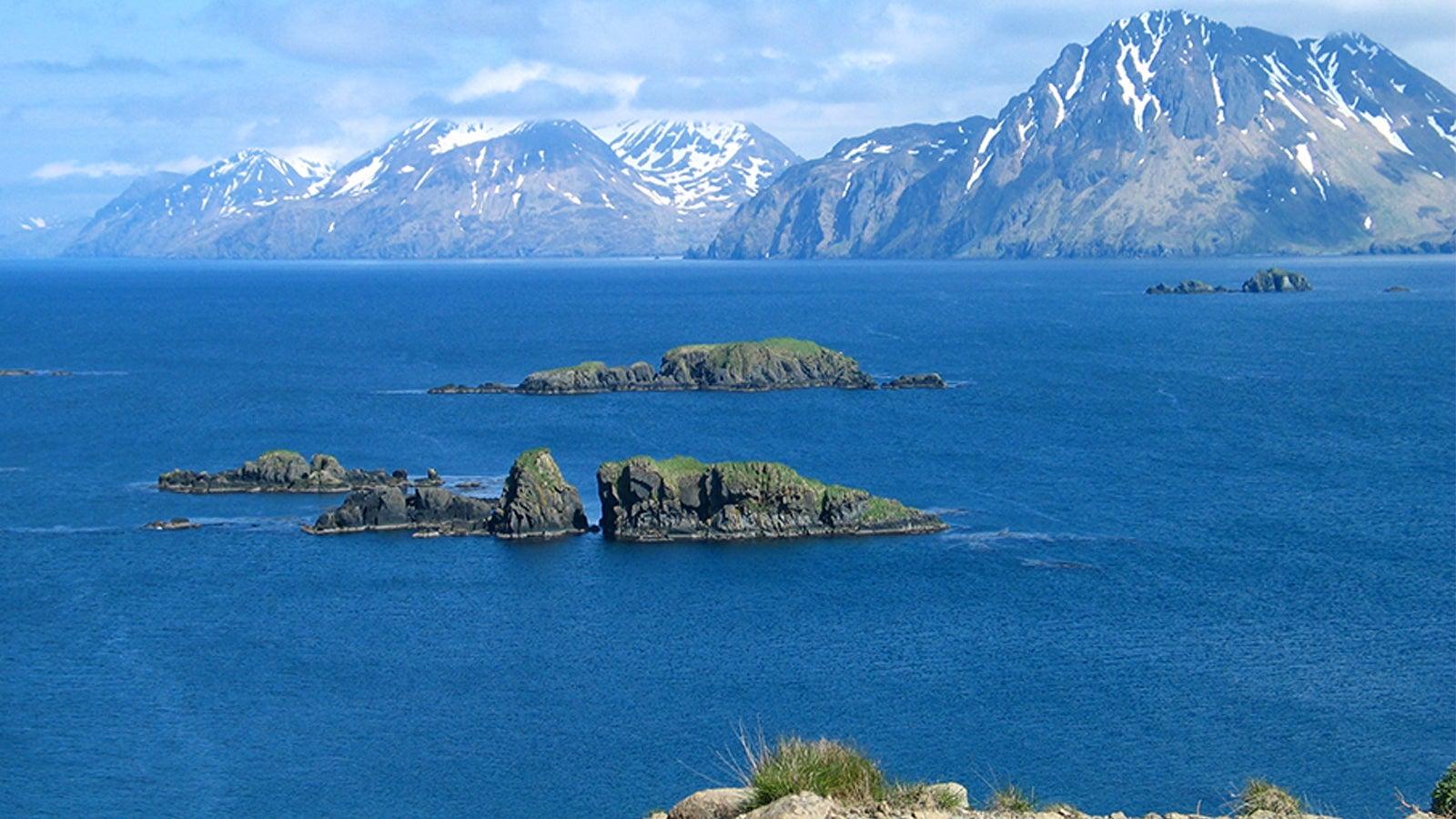 Das Beringmeer ist seit Anfang März fast eisfrei