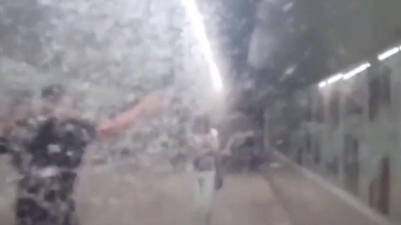 Schaurig: Stadt wird von Eintagsfliegen-Plage befallen