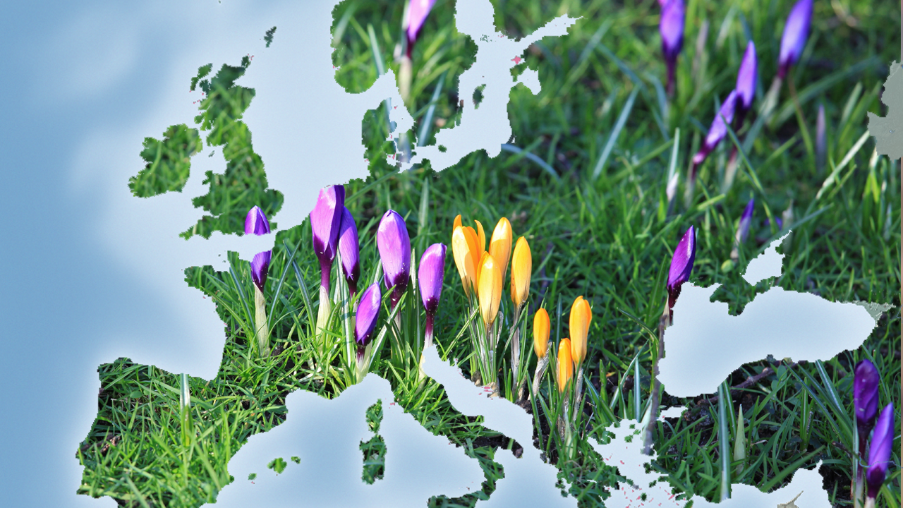 Der Frühling stürmt heran