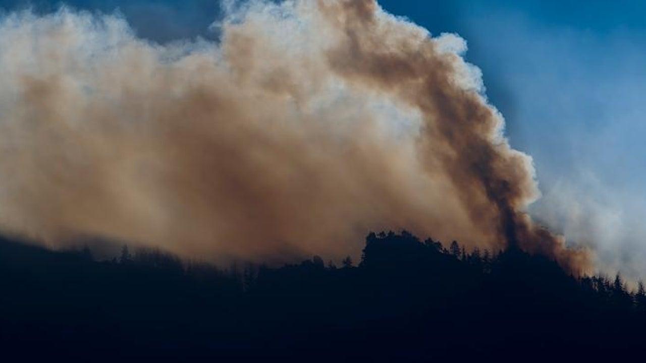 Verletzter zündet Signalfeuer und löst Waldbrand aus