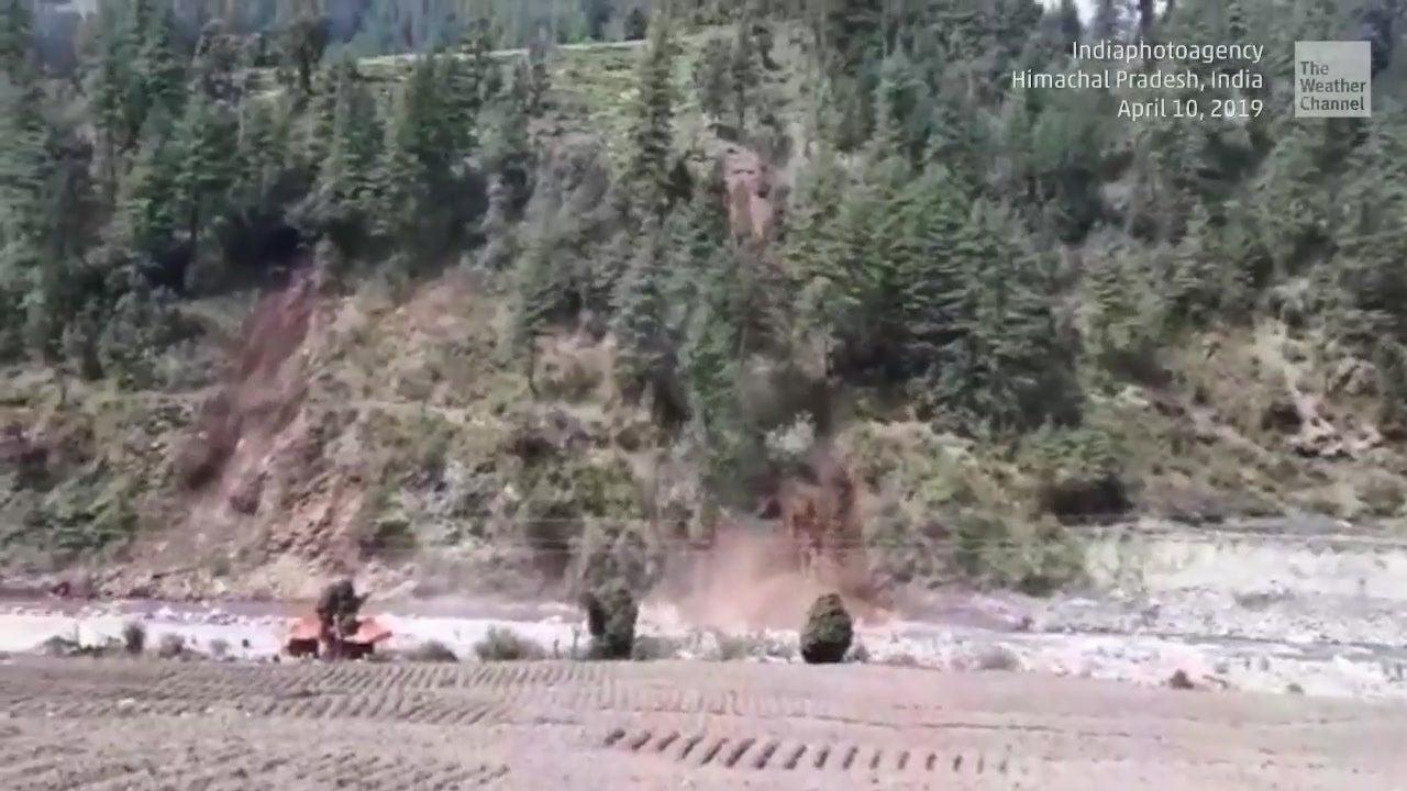Landslide Wipes Out Hillside Forest