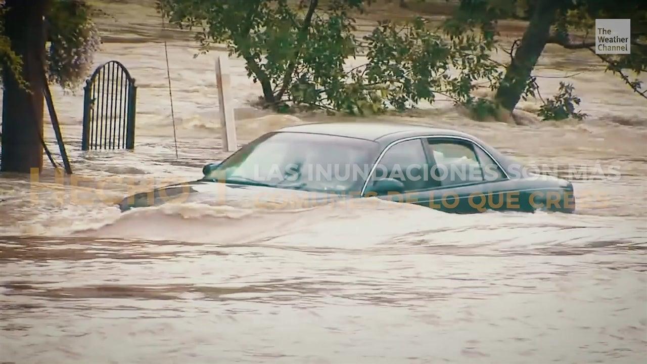 Tips para salvarte de una inundación