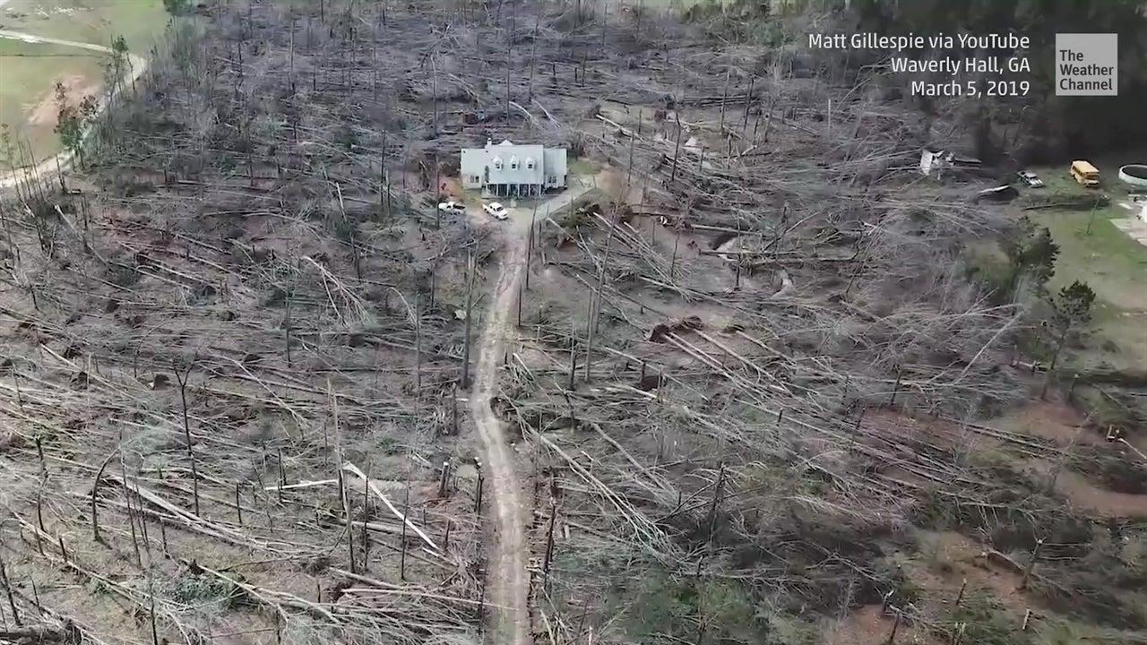 Tornado devastó árboles pero no esta casa