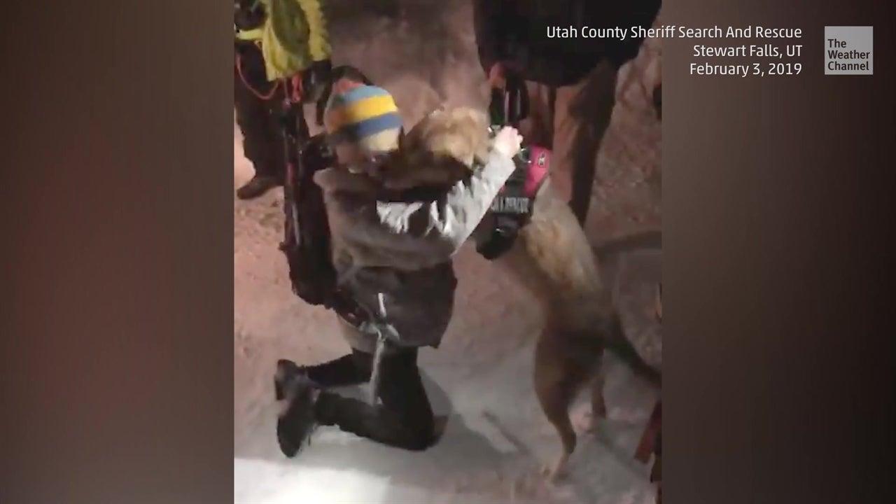 Milagroso rescate de perro en un banco de nieve