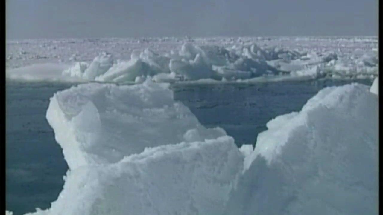 Eis wieder einfrieren: Forscher will so Arktis retten