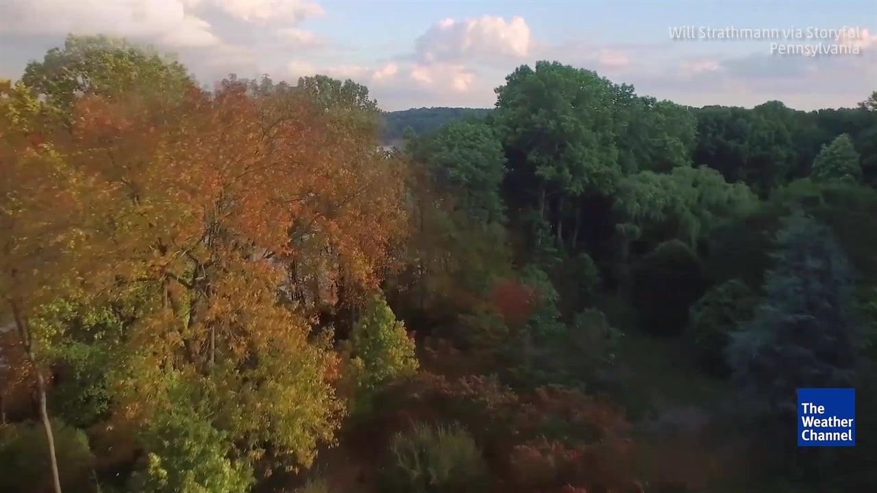Wunder der Natur: Vier Jahreszeiten im Zeitraffer
