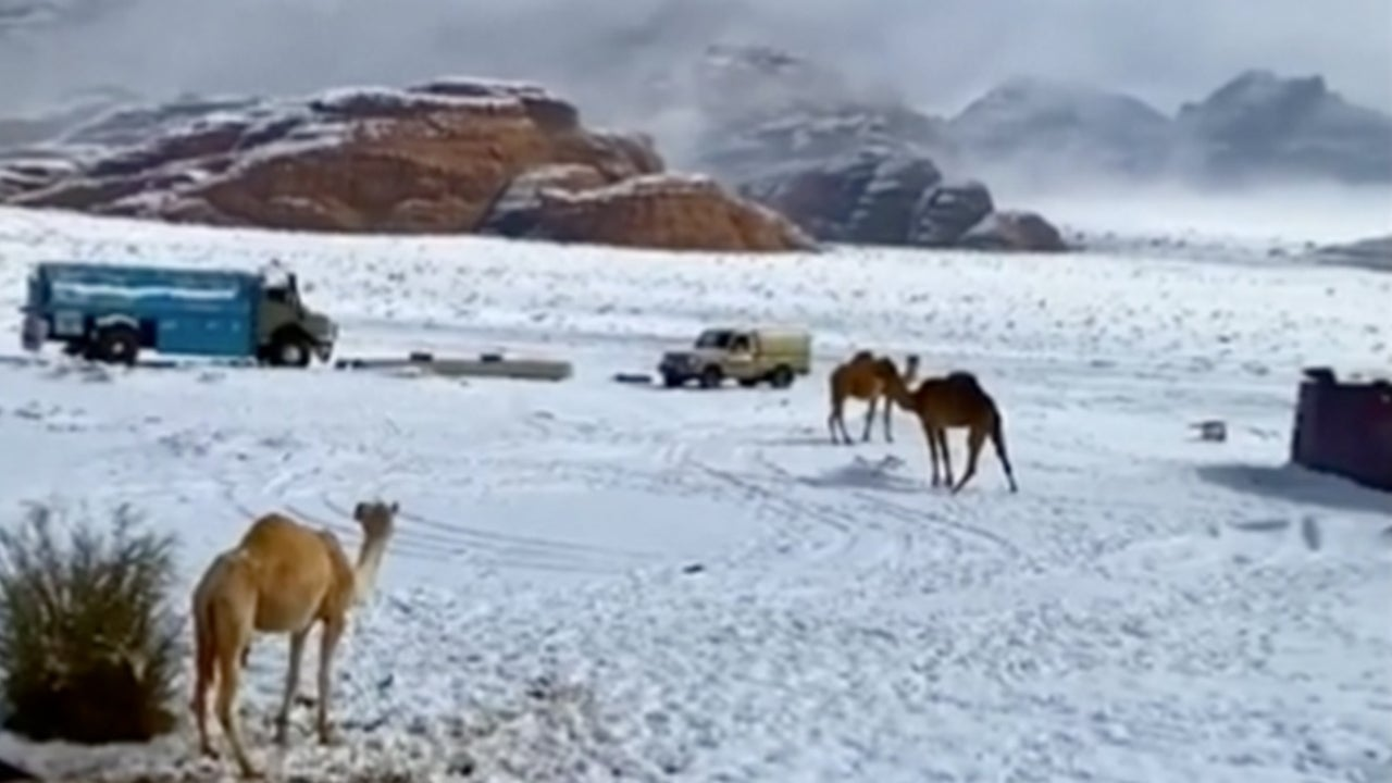 Snow Turns Saudi Arabian Desert into Winter Wonderland