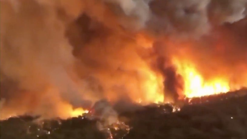 Arsonists Are Only Part of Australia's Wildfire Situation