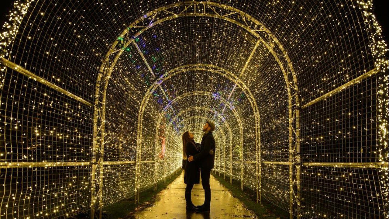 30 Meter hohe Weihnachtsbäume und Lichterinstallationen aus über 270.000 LED-Leuchten: Weltweit überbieten sich die Länder mit spektakulären Weihnachtsdekorationen. Vor allem eine europäische Tradition hat sich zum weltweiten Exportschlager entwickelt.