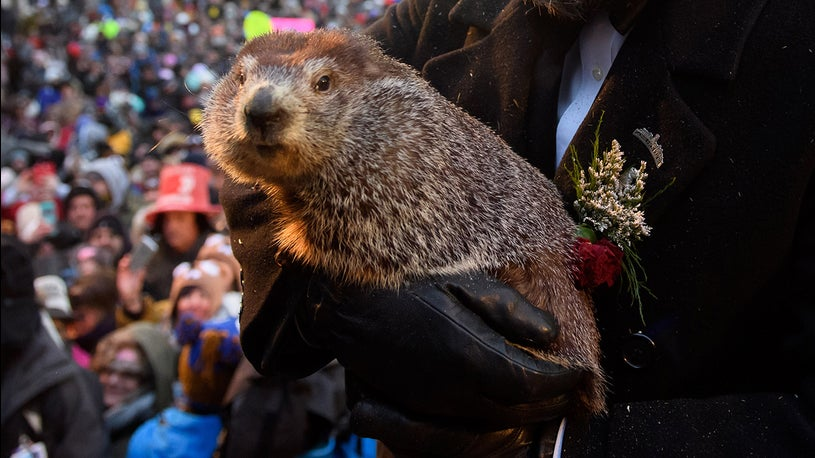What Did Punxsutawney Phil Decide About Winter?