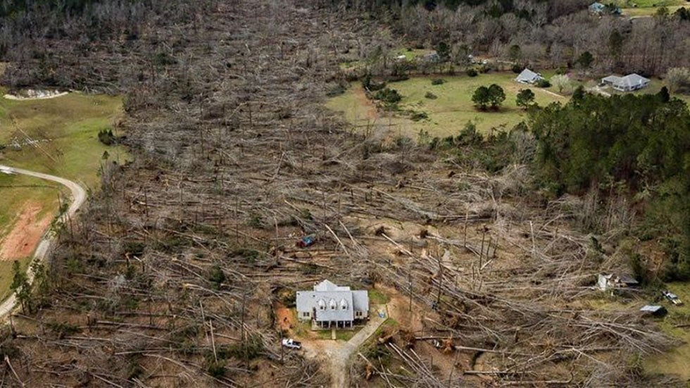 Tornado Flattens Trees, Leaves Home Untouched
