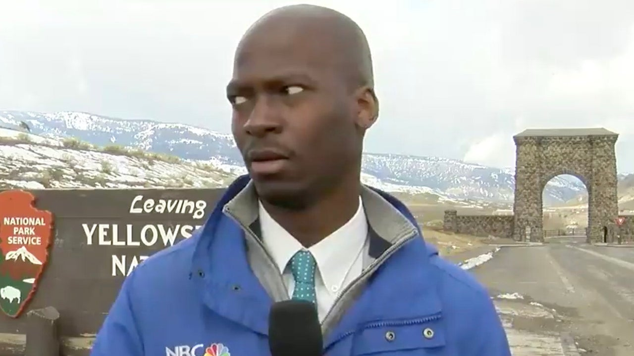 Reporter's Reaction to Nearby Bison Is Priceless