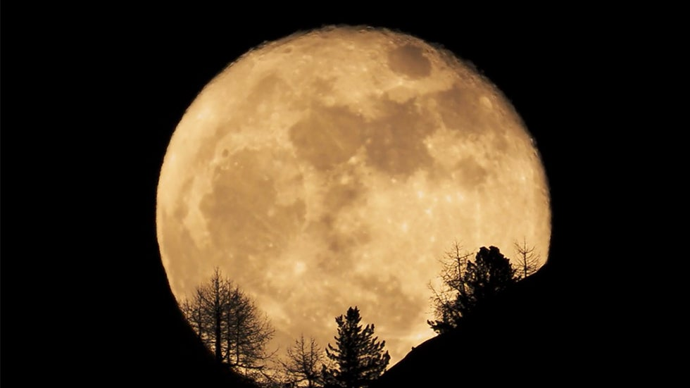 Moon Is Shrinking, Wrinkling and Shaking, New Study Says