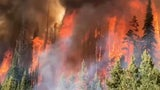Rocky Mountain Wildfires Burning More Now Than Past 2,000 Years