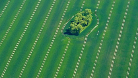 An aerial view shows a green field near Fuerstenwalde, eastern Germany, on April 29, 2014. (Patrick Pleul/AFP/Getty Images)
