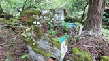 Nature Reclaims Abandoned Village in Western Japan