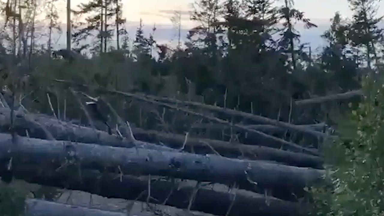 Canadian Park Suffers Massive Tree Loss During Hurricane Dorian