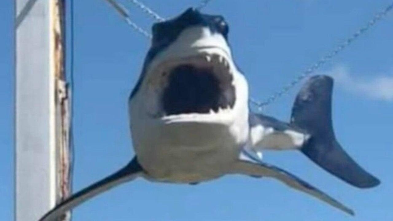 'Shark' Goes Airborne During Hurricane