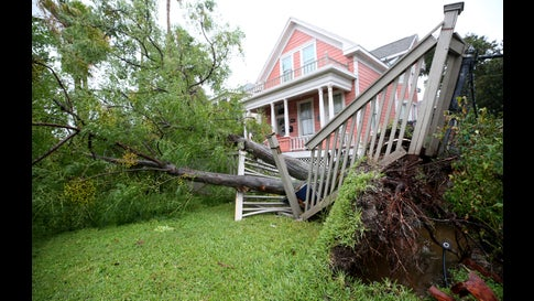 A tree uprooted by Hurricane Nicholas damaged two fences and sprinkler lines on this road in Galveston, Texas, Tuesday, Sept. 14, 2021. (Jennifer Reynolds/The Galveston County Daily News via AP)
